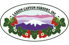 lassen-canyon-nursery-logo